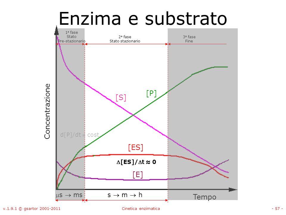 Enzima e substrato [P] [S] Concentrazione [ES] [E] Tempo ms  ms